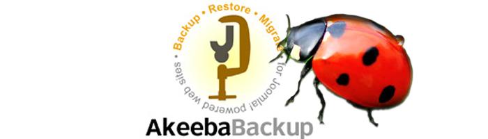 Akeeba Sicherheitslücke 3.2.7
