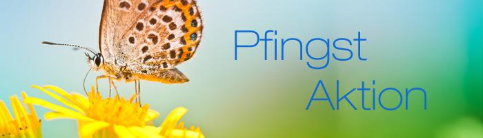 Gewinnen Sie bei der Pfingst Aktion und nutzen Sie Webhosting kostenlos