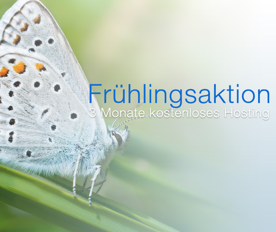 fruehlingsaktion-2013
