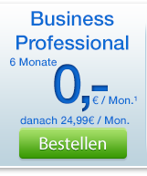 Business Professional bestellen
